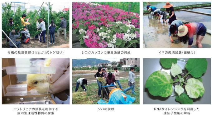 photo112.jpg