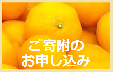 mikan2.png