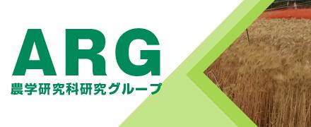 banner_arg.png