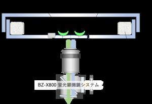 図1.png